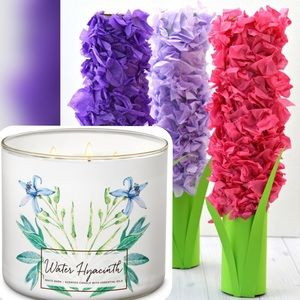 "NEW ""Water Hyacinth"" Candle"